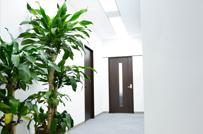 2016年に移転したオフィス